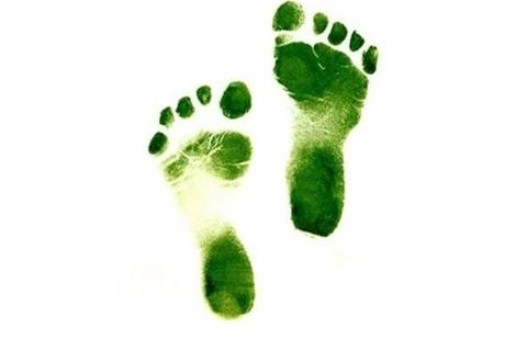 Sustentabilidade - pegada ecológica