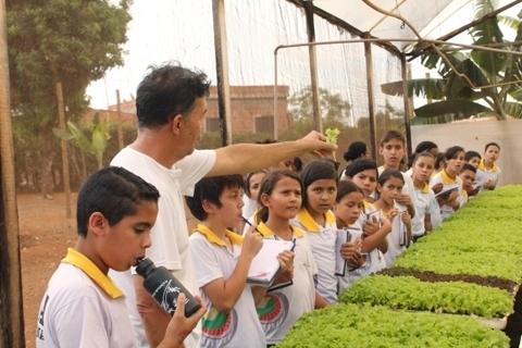 Educação ambiental e hidroponia