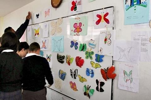 El papel de las mariposas en la conservación de las plantas