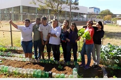 Revitalização da horta na escola